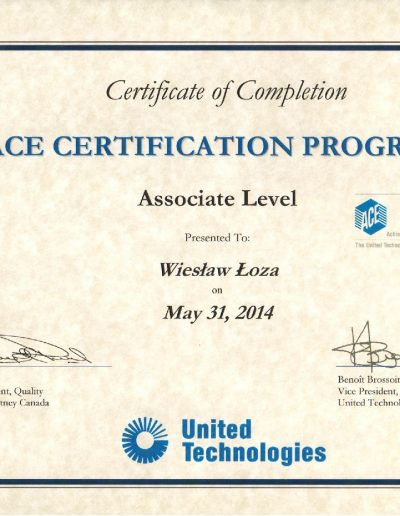 ACE Certification Program